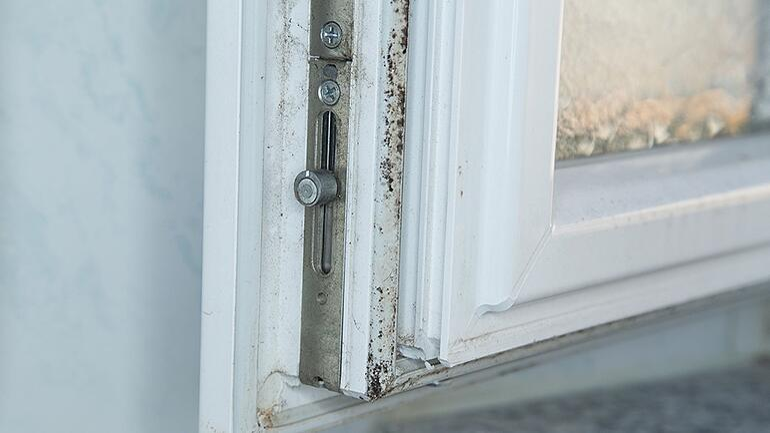 moldy-window-ac-units.jpg