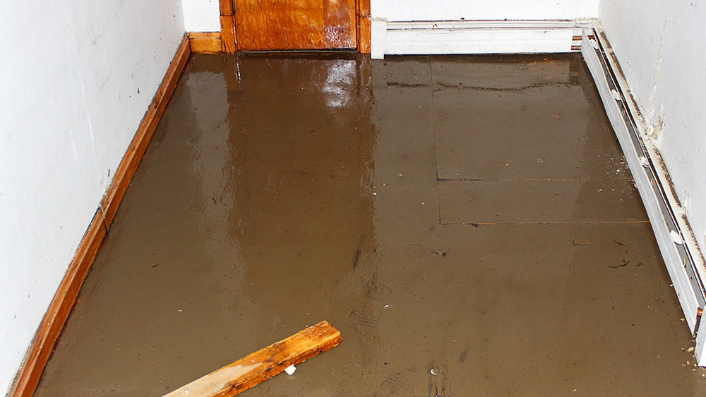 How To Handle A Flooded Basement