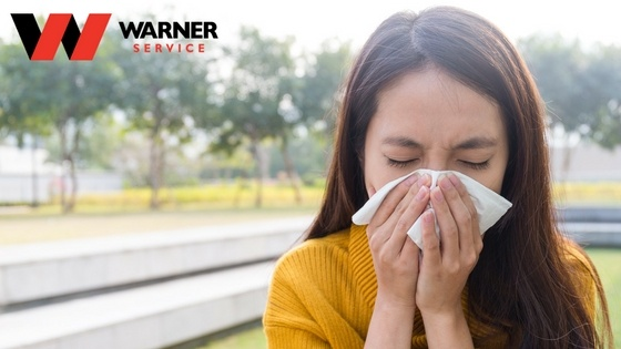 How To Finally Get Rid Of Pesky Allergens And Pathogens
